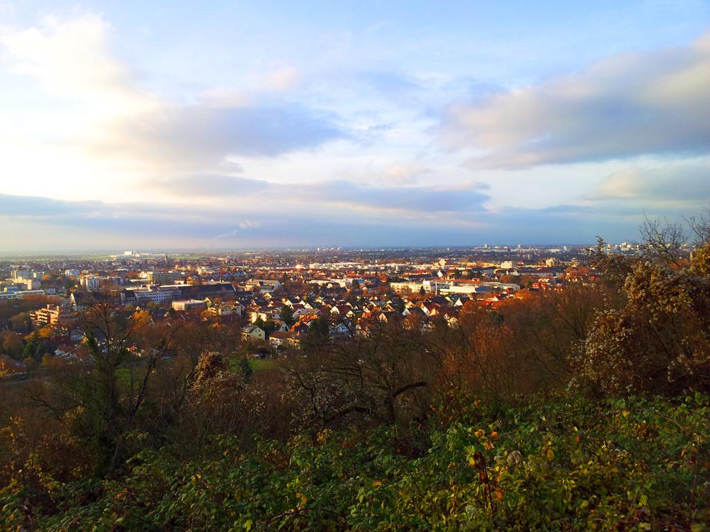 Aussicht_in_die_Rheinebene